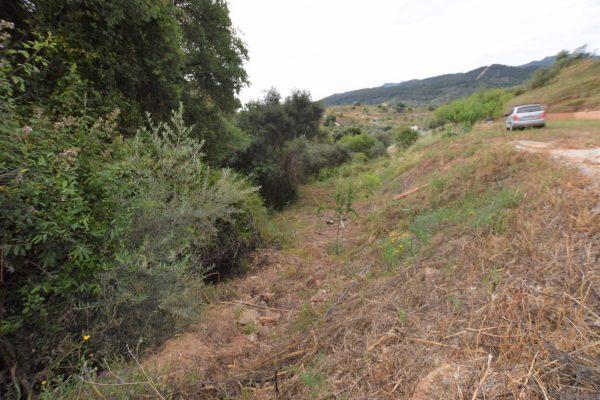 Plot of land for sale in Monda -Finca rustica en venta en Monda